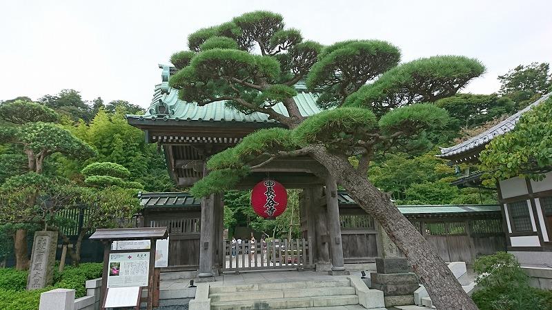 江ノ島・鎌倉七福神巡りに行ってきました。